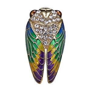 Cicada Brooch NWT